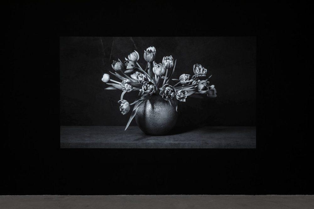galerie art contemporain