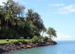 Guyane : le top des musées à visiter